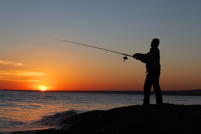 The 10 Best Saltwater Fishing Rods For Every Occasion The Rods That Make Fishing Easier Brobible