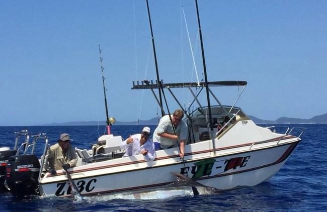 grander blue marlin fishing south africa