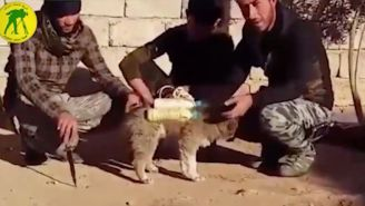 Videos Show Cold-Blooded ISIS Using Drones And PUPPIES With Bombs Attached To Them To Attack Their Enemies