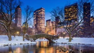 7 Teens Almost Die While Trying To Take A Stupid Selfie In NYC's Central Park