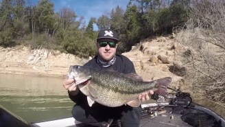 Pending World Record Spotted Bass Caught In California And Weighed On Video Is A TOTAL HOG Of A Fish
