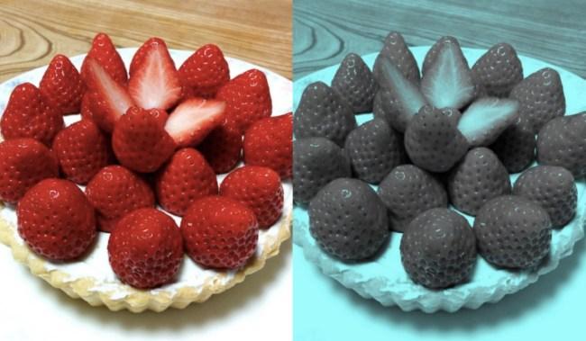 blue green strawberries optical illusion
