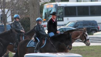 Trump's Interior Secretary Pulled The Ultimate Power Move This Morning And Rode To Work ON A HORSE