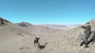 Watch A Badass Mongolian Eagle Hunt And Take Down A Fox While Wearing A GoPro Strapped To Its Wings