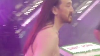 Must Watch Steve Aoki OBLITERATE A Fan With A Cake At Ultra