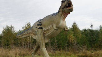 Tyrannosaurus Rex Were Sensitive Lovers That Used Their Noses For Foreplay