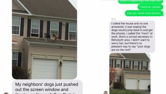 This Text About Dogs Having A Party On A Roof Is The Best Text-From-Mom You'll Ever Read