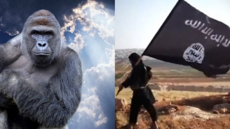 Isis Harambe Is This Chick's Real Name, But It Wasn't Weird For Her Until 2014