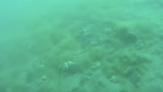 Scuba Diver Films Trippy Earthquake Underwater And This  Looks Like An Acid Flashback
