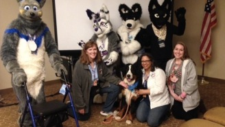 Retiree Takes Her Therapy Dog To 'FurryCon', Is Shocked There Aren't Any Other Pets
