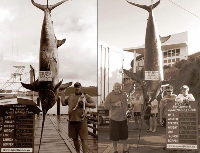 World Record Swordfish Fishing New Zealand