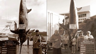Man Catches TWO World Record Swordfish In Just TWO Days, Is An Official Badass