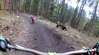 VIDEO: Mountain Bikers Have Close Call With Charging Bear