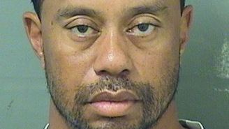 Gilbert Arenas Had The BEST Reaction To Tiger Woods' Unusual Excuse For His DUI Arrest