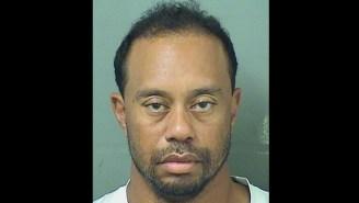 The 25 Best Tiger Woods DUI Mugshot Memes