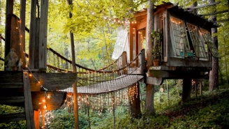 The Most Popular Listing On Airbnb Is A Treehouse And The Rental Price Comes With Sticker Shock
