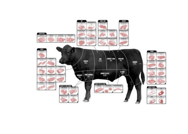 cuts of meat poster