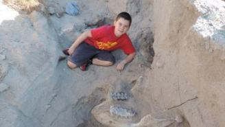 9-Year-Old Kid Discovers Million-Year-Old Fossil By Tripping Over It