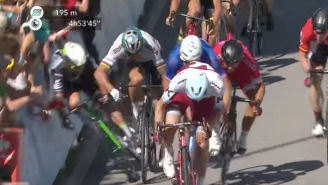 World Champion Cyclist Peter Sagan DQ'd From Tour De France For Causing This Insane Crash
