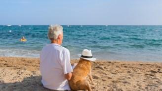 The Average American Working Household Has Virtually Zero Retirement Savings
