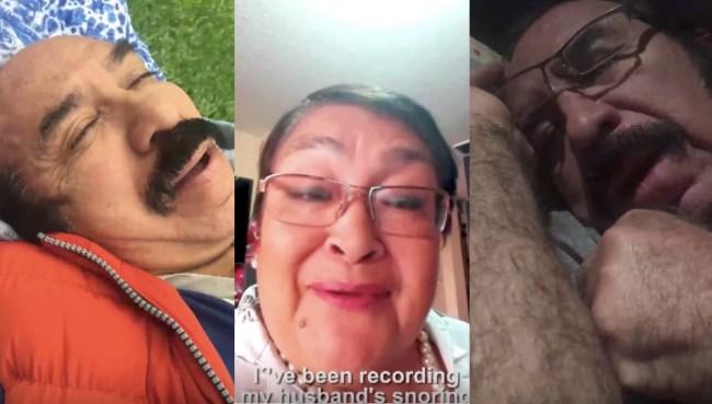 Despacito snoring remix
