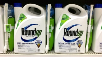Does The Weed-Killer Roundup Cause Cancer? Plus Yelp's Stock Gets A Shot In The Arm