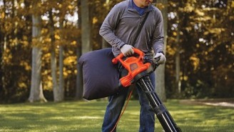 This Black + Decker 3-In-1 Blower, Vacuum And Mulcher Will Tackle The Biggest Yard For Under $50