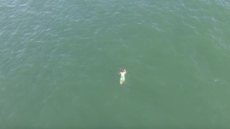 Man Jumps Into Ocean To Evade Police And Drone Footage Captures A Large Shark Swimming After Him