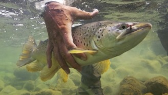 Meet Andy Anderson, A Photographer Specializing In Fly Fishing And Hunting, A Man Living The Dream