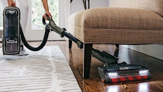 5 Best Vacuums For Apartments That Fit Any Budget