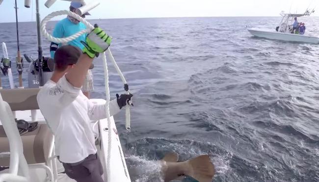 handline grouper fishing