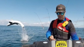 Jet Ski Fisherman Nearly Loses It When A Mako Shark Flips Out Of The Water Next To Him