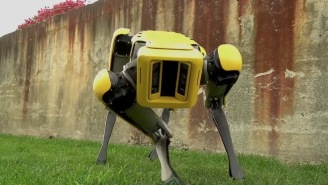 Boston Dynamics Robots Have Figured Out How To Work Together And I Guess Humanity Had A Pretty Good Run