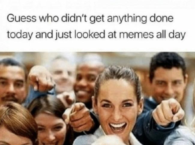 best funny memes 2017