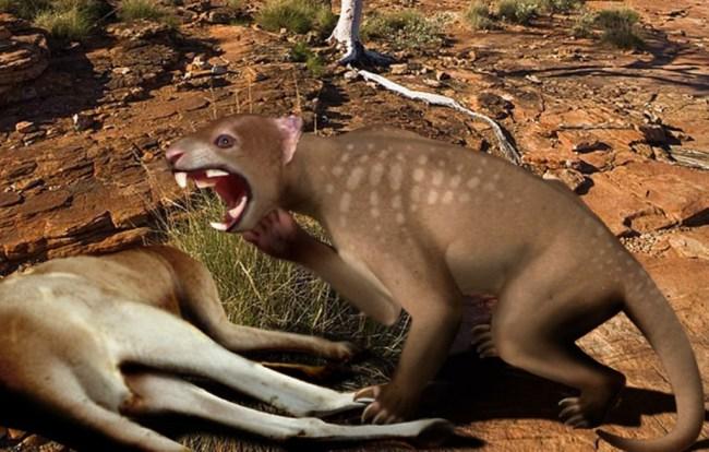 marsupial lions