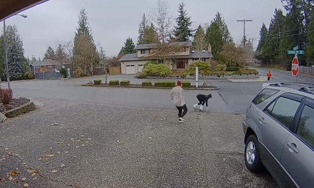 Nanny Catches Package Thief in the Act