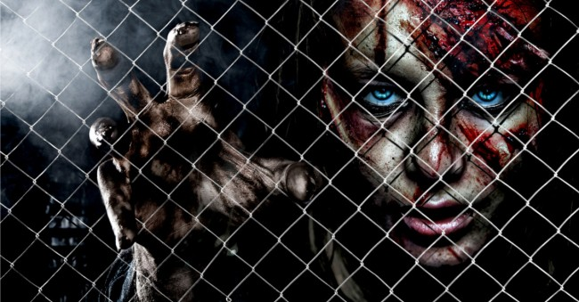 Physicists Researched How Survive Zombie Apocalypse