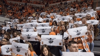 Trae Young Is Getting Hardcore Trolled For His Fear Of Birds At Bedlam