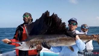 LA Chargers Defensive Tackle Corey Liuget Catches Massive Kingfish And Sailfish On Epic Fishing Trip