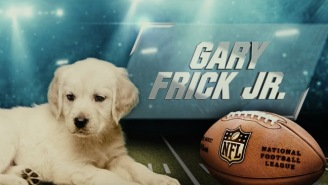 Puppies Pick The Super Bowl 52 Winner