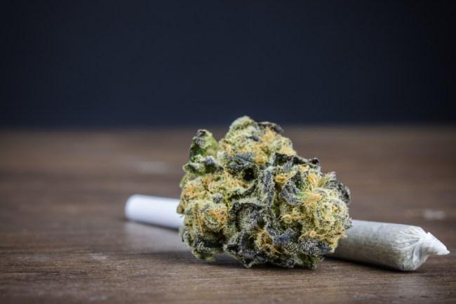 legal marijuana cannabis