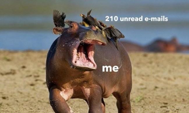 2018 funny memes