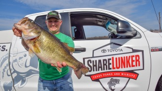Fishermen Land A 13 And 15.48-Pound Bass In Texas' Lake Fork In One Week!