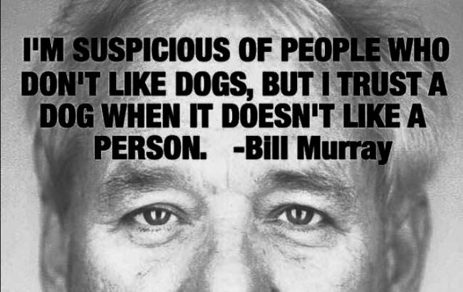 2018 funniest memes Bill Murray quote