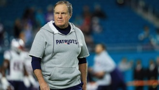 Bill Belichick's New Puppy Has Its Own Hoodie With The Sleeves Cut Off Because Of Course It Does