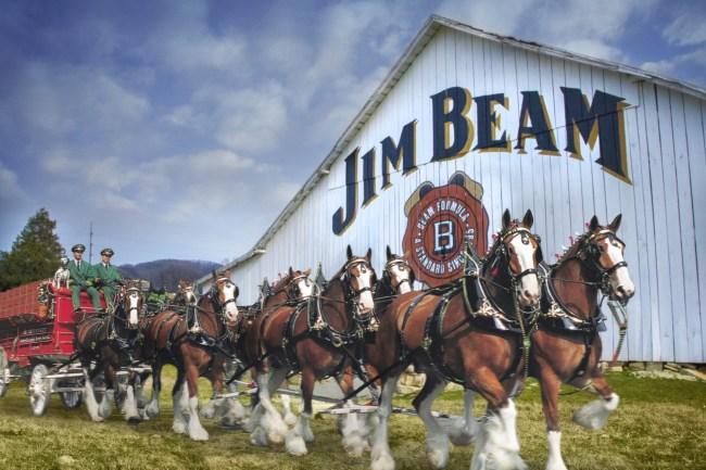jim beam budweiser barrel aged beer