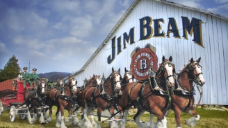 Budweiser And Jim Beam Are Teaming Up To Make A Bourbon-Aged Beer