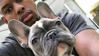 JuJu Smith-Schuster's French Bulldog Puppy Escapes His Cage With Gravity-Defying Leap