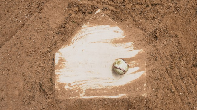 Florida Auburn College World Series