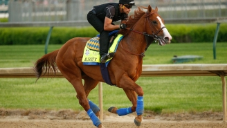 """Sports Finance Report: Wheels Up Pays """"Seven Figures"""" for Exclusive Sponsorship On-Board Triple Crown Candidate Justify"""